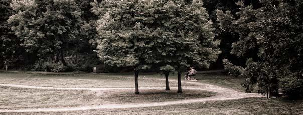 Central Park, Ottawa, Ontario